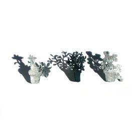 Testos: sempre viva, ruda i caputxina / Flowerpots: evergreen, ruta and nasturtium